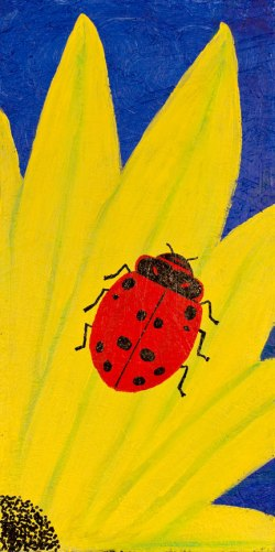 The Legend Of The Ladybug Kirk H Neely