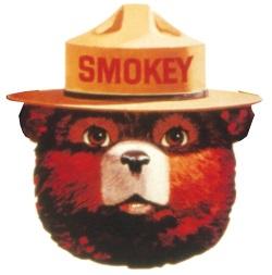 smokey-bear-illustration